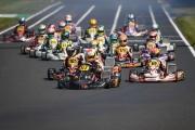 CIK-FIA Kart Europameisterschaft PFI (GBR) 17.05.-20.05.2018